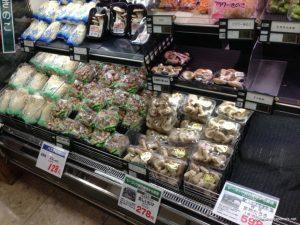 champignon japon
