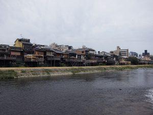 la fameuse rivière aux canards