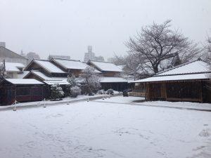 hiver-tokyo