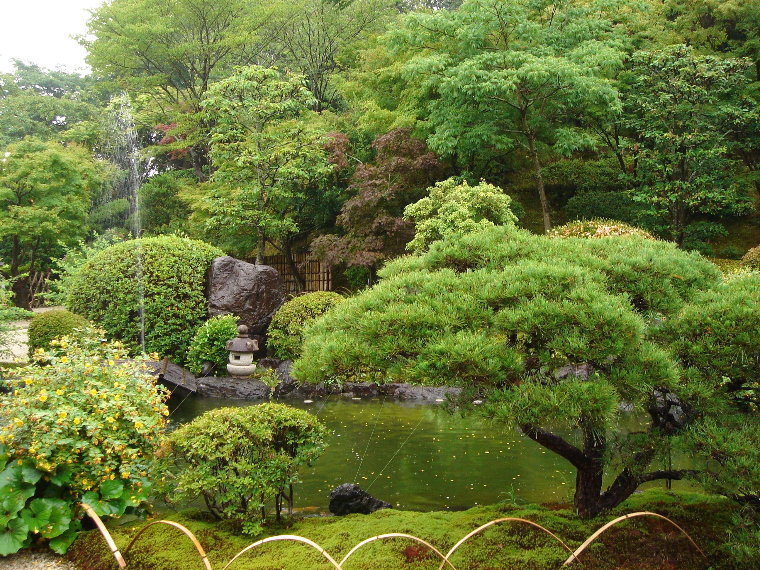 Article Le jardin japonais