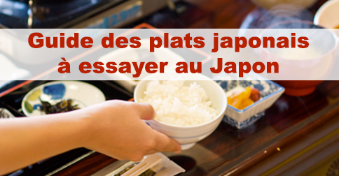 Article 60 plats japonais : guide sur la cuisine japonaise