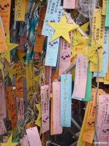 arbre-tanabata