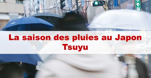 Article La saison des pluies au Japon : Tsuyu (梅雨)