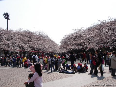Parc Ueno et foule