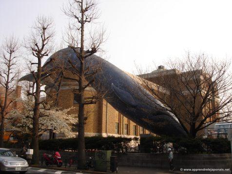 Musée national de la nature et des sciences